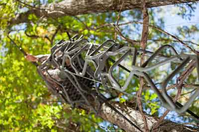 Summit Introduces The Vine Series of Treestands